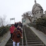 PARIS PIED DE VIGNE (12)