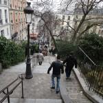 PARIS PIED DE VIGNE (16)