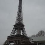 PARIS PIED DE VIGNE (20)