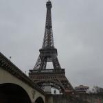 PARIS PIED DE VIGNE (23)