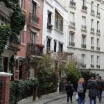 PARIS PIED DE VIGNE (4)
