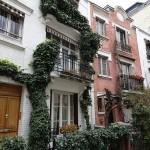 PARIS PIED DE VIGNE (5)